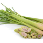 Lemongrass Herbs 1oz